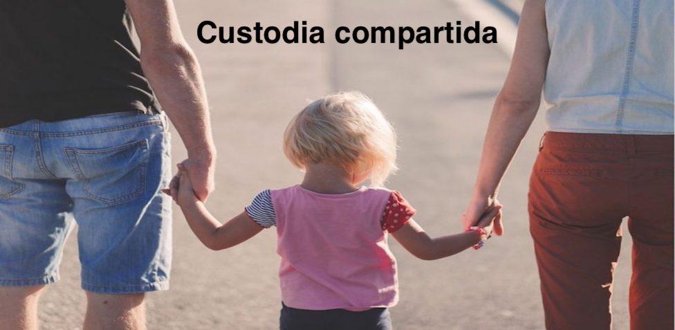 Abogado de custodia compartida Las Palmas